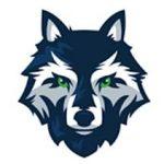 Livingston-Wolves